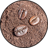 coffee de roccis beans and grains De Roccis wholesale suppliers