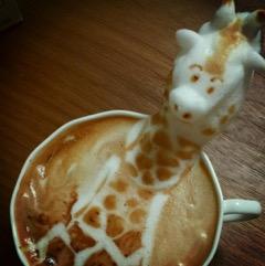 caffè marchi privati sculture schiuma caffè de roccis