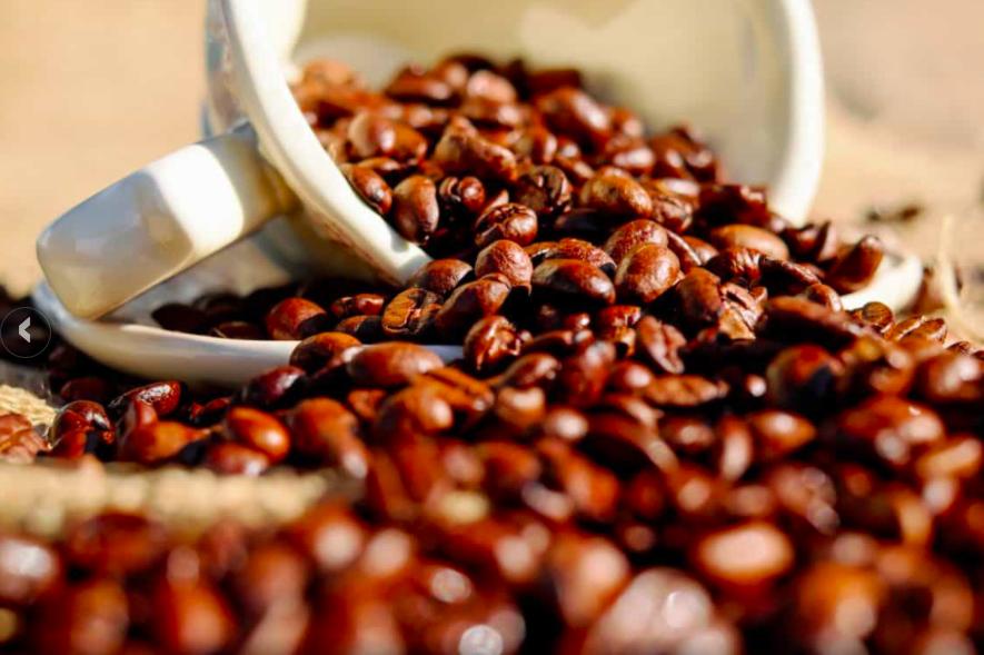 caffè etichetta usa caffè de roccis